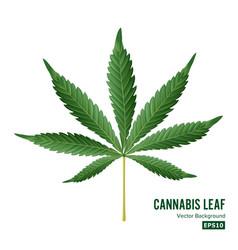 Cannabis icon medical green plant vector