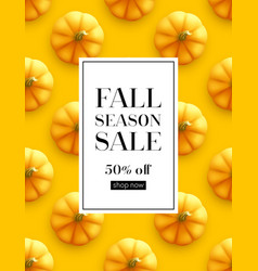 design banner autumn sale fall poster design on vector image