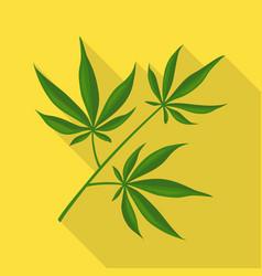Design marijuana and leaf symbol web vector