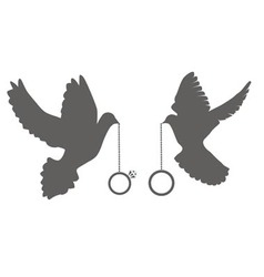 doves rings vector image