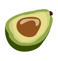 Isolated avocado cut vector