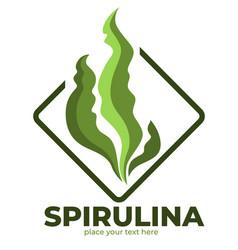 Superfood isolated icon spirulina aglae leaves vector