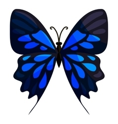 Big butterfly icon cartoon style vector image vector image