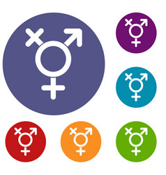 transgender sign icons set vector image