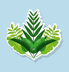 Bunch natural tropical leaves botanical card vector