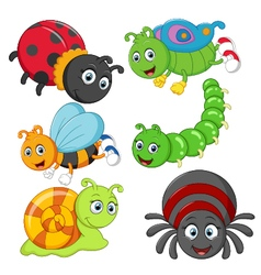 Cartoon insect vector image