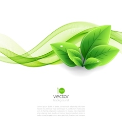 eco leaves and green wave vector image