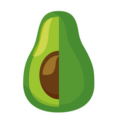 fresh avocado on white background vector image