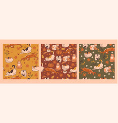set seamless patterns with autumn cats vector image