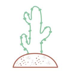 cactus plant draw vector image