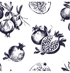 seamless pattern with pomegranates fruit on white vector image