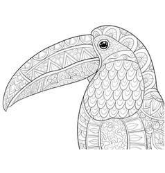 Adult coloring bookpage a cute head of toucan vector
