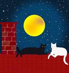 Black and white cats on the roof vector image