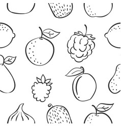 Pattern fruit various hand draw vector