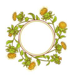 Safflower plant frame vector
