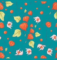 Seamless pattern autumn physalis flowers leaves vector