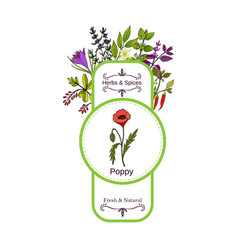 Vintage herbs and spices label collection poppy vector