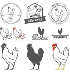 Set of vintage chicken meat labels and stamps vector image vector image