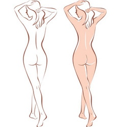 nude woman silhouette vector image