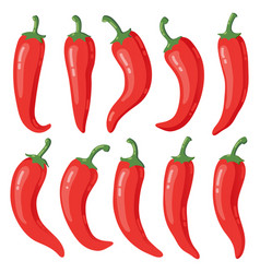red chilli peppers cartoon hot mexican vector image