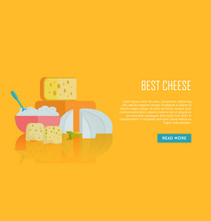 best cheese banner natural farm food vector image