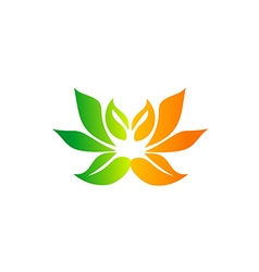 abstract lotus flower color spa logo vector image