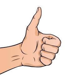 Cartoon thumbs up vector image vector image