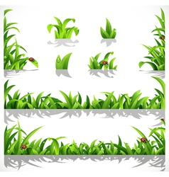 Green lush grass with dew and ladybirds vector image vector image