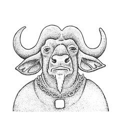 African Buffalo Engraving vector image