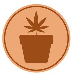 Cannabis pot bronze coin vector