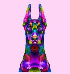 colorful doberman portrait vector image
