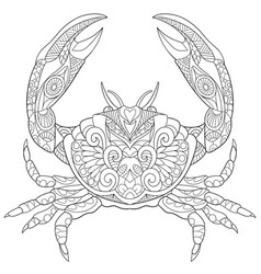 Crab coloring page vector