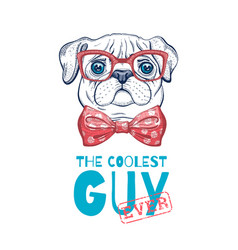 cute pug dog t-shirt print design cool animal vector image