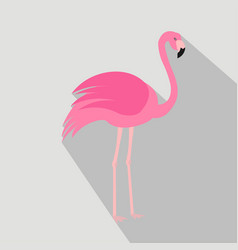 Flamingo cartoon flat icon brazil vector