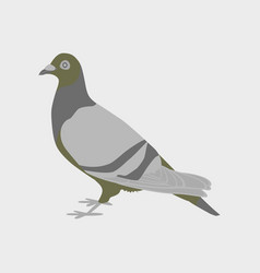 In flat style of dove vector