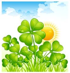 landscape with four leaf clovers vector image