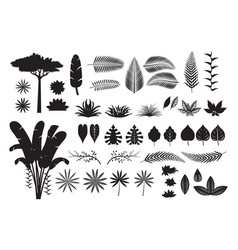 Leaves tropical jungle silhouette set vector
