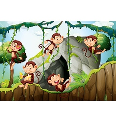 Five monkeys living in the forest vector image