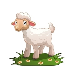 Little cartoon white lamb vector image