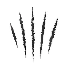 animal claw scratches wild claws scratch vector image