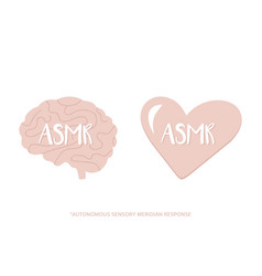 Concept of asmr in heart and mind vector