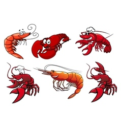 Seafood characters of shrimp prawns and lobsters vector