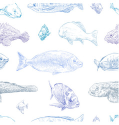 seamless hand drawn fish pattern backgrounds mari vector image