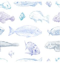 Seamless hand drawn fish pattern backgrounds mari vector