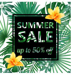 summer sale concept summer background vector image