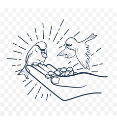 linear silhouette feeding birds from seeds hand vector image vector image