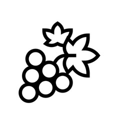 bunch grapes wine line icon winery vector image