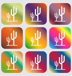 Cactus icon Nine buttons with bright gradients vector