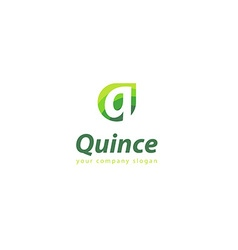 Letter Q logo Template for your company vector