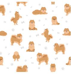 Pomeranian german spitz seamless pattern vector